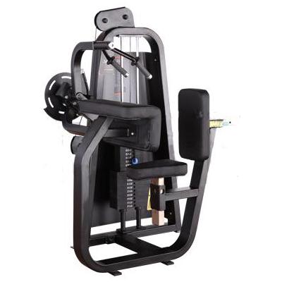 体育联盟-平直三头肌屈伸训练器